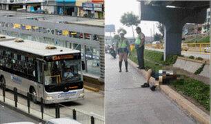 Independencia: persona murió tras ser atropellada por bus del Metropolitano