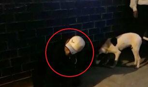 SJL: ladrón fue herido por intentar disparar contra agente policial tras asaltar pollería