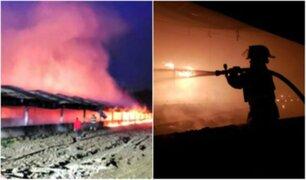Miles de pollos mueren calcinados tras voraz incendio