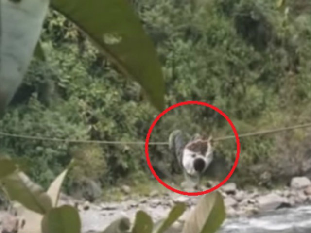 Huánuco: pobladores arriesgan sus vidas al cruzar río