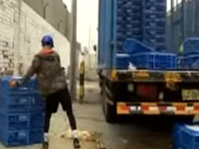 Ate: avícola seguía atendiendo pese a ser clausurada por la municipalidad
