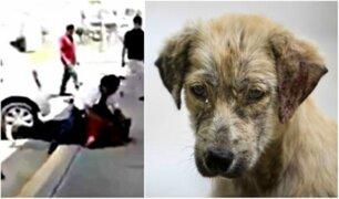 Hombre propina fuerte golpiza a otro por patear a perro en la calle