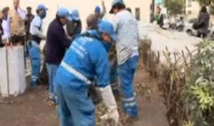 Municipalidad de Miraflores limpió casa abandonada de Petroperú