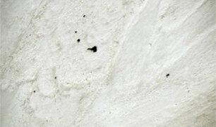 India: encuentran los cuerpos de siete montañistas en el Himalaya