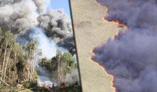 EEUU: incendio forestal en Florida consume 18,500 hectáreas