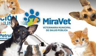 Miraflores tendrá su veterinaria municipal y funcionará las 24 horas del día