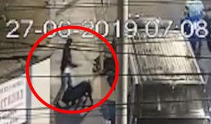 Surquillo: capturan ladrones con ayuda de brigada canina