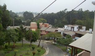 Surco: vecinos protestan contra construcciones en laderas