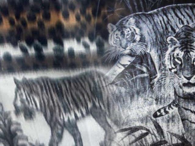 Emblemática frazada con diseño de tigres cumple 130 años