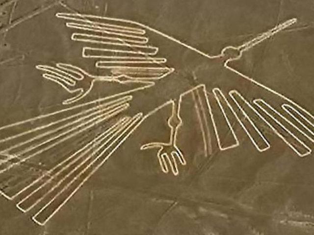 Japón: descubren identidad real de las aves dibujadas en líneas de Nazca