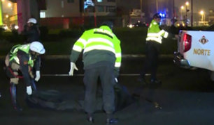 SMP: hombre muere atropellado y conductor se dio a la fuga