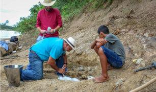 Brasil: menor de 11 años halló fósil de cocodrilo gigante prehistórico