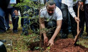 Etiopía: plantan más de 350 millones de árboles para frenar cambio climático