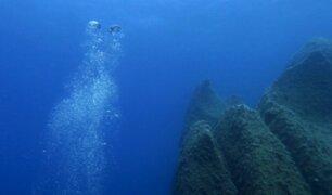 Logran filmar a animal casi imposible de captar en el océano Pacífico