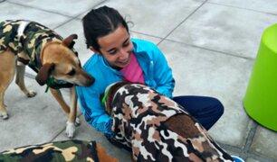 Lima 2019: mira a los tiernos perritos que conquistaron a atletas