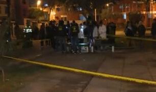 Cercado de Lima: trabajador es asesinado cuando pintaba bancas de parque