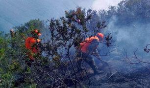Incendio que amenazaba Kuélap fue controlado por brigadistas especializados
