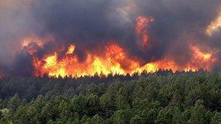 Amazonía en llamas: satélite muestra terribles daños que va dejando incendios forestales