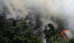 Incendios en la Amazonía: hectáreas arrasadas equivalen a la región Lima, señala experto