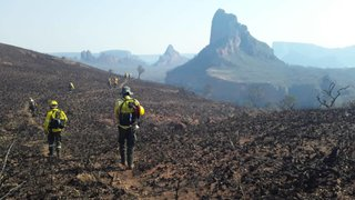Bolivia y Paraguay unen fuerzas para combatir incendios en la Amazonía