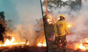 Bolivia: incendio forestal consume un millón de hectáreas en Santa Cruz