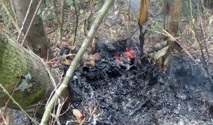 Sernanp acude ante posible incendio forestal en Sierra del Divisor
