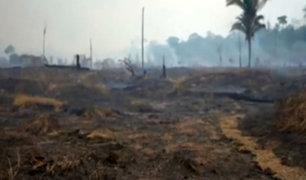 Brasil: desolador panorama tras incendios forestales