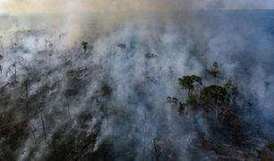Incendios en la Amazonía: nuevos siniestros fueron reportados en las últimas horas