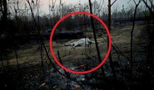 Incendios en la Amazonía: catástrofe terminó con la vida de varios animales