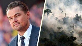 Leonardo DiCaprio crea un fondo de 5 millones de dólares para salvar el Amazonas
