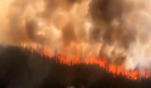 Segundo pulmón verde del mundo se incendia en África