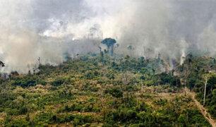 Conservación de la Amazonía: cinco puntos claves del ´Pacto de Leticia´