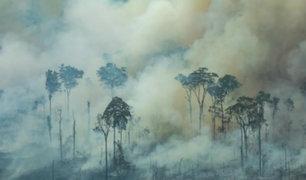 Brasil: decretan prohibir encendido de fuego durante dos meses en todo el país