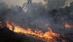 Chile enviará cuatro aviones a Brasil para combatir incendios forestales
