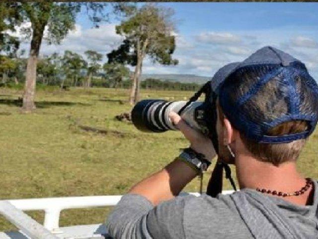 Esta desgarradora fotografía  de un elefante mutilado lidera votaciones en concurso