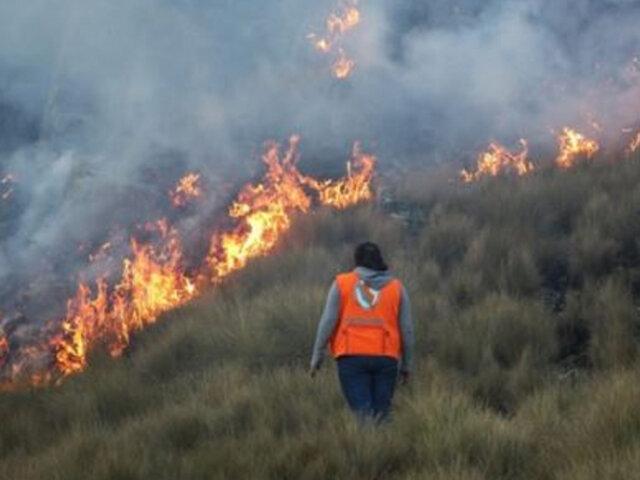 Incendios forestales en Cajamarca, Huancavelica, La Libertad y Cusco fueron extinguidos