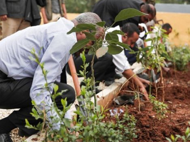 Este país plantó más de 350 millones de árboles en un solo día