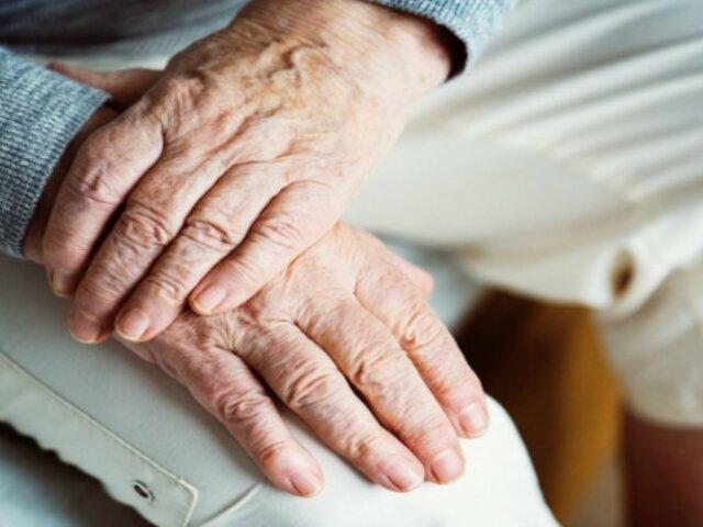 Científicos españoles descubren proteína que retrasa el envejecimiento