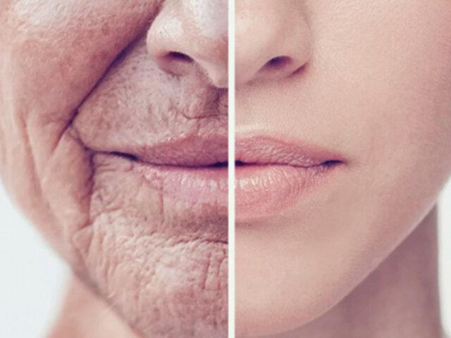 España: descubren proteína que retrasa el envejecimiento