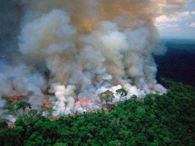 Incendios forestales llevan consumiendo la Amazonía de Brasil por más de 15 días