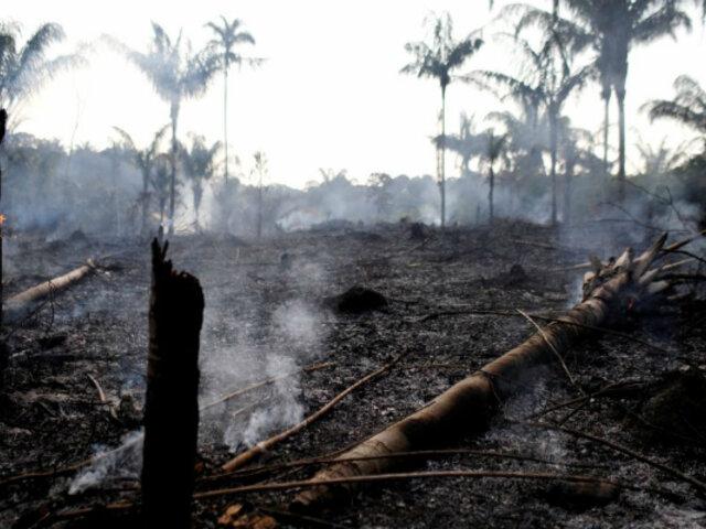 Brasil: incendio forestal habría consumido alrededor de 500 mil hectáreas de la Amazonía