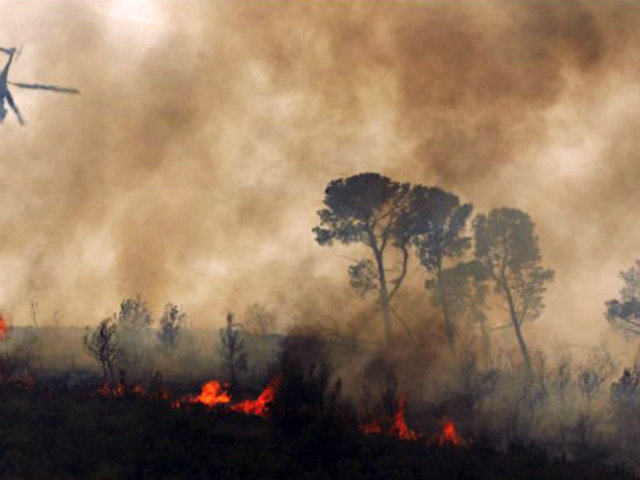 Bolivia: incendio forestal arrasa con medio millón de hectáreas