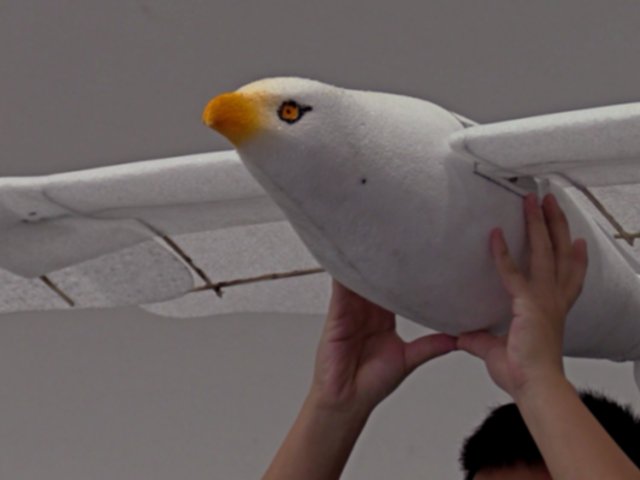 China: presentan dron con curiosa forma de gaviota