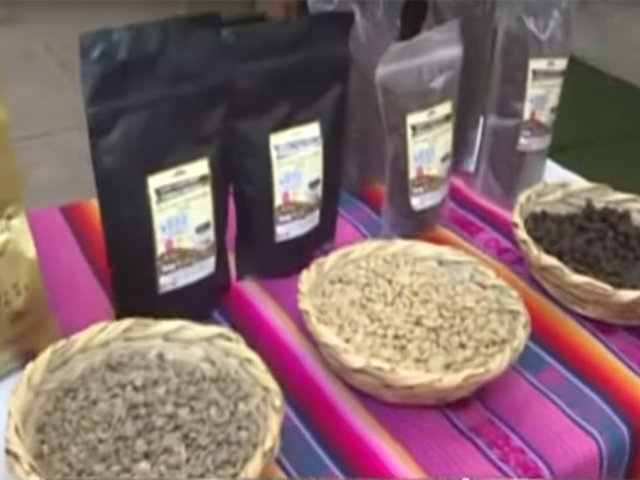 Café de Yanatile: productores cusqueños se apoderan del mercado limeño