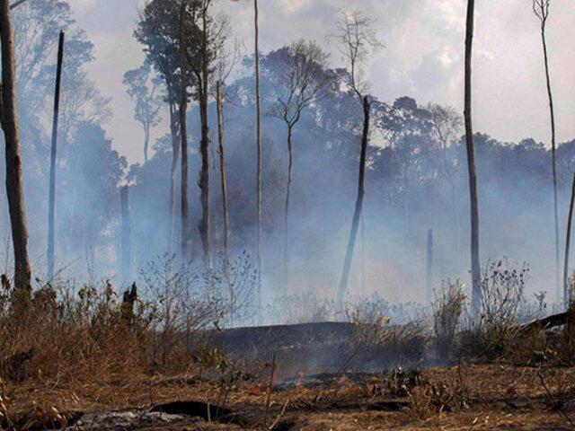 Mafias emplean violencia e intimidación para deforestar y quemar la Amazonía, denuncia HRW