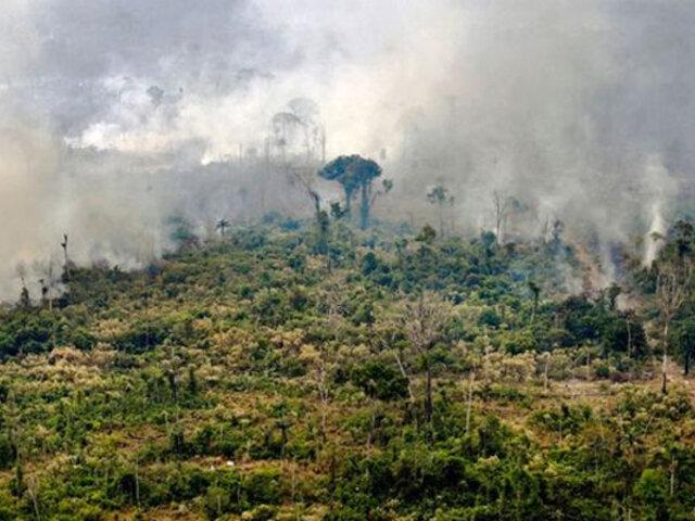 Si se destruye el 25% de la Amazonía, se convertirá en una sabana, según experto