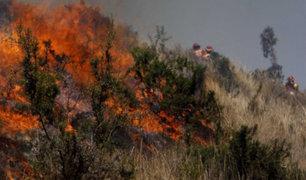 Alcalde de San Jerónimo: se dará máxima sanción al que provocó incendio forestal en Cusco