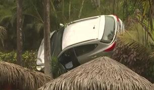 Miraflores: camioneta se sostiene de una palmera tras despiste en Costa Verde