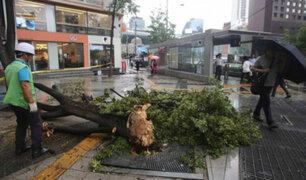 Corea del Sur: muerte y destrucción tras paso de tifón 'Lingling'