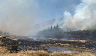 Minam: Hasta el momento se han registrado 19 incendios forestales